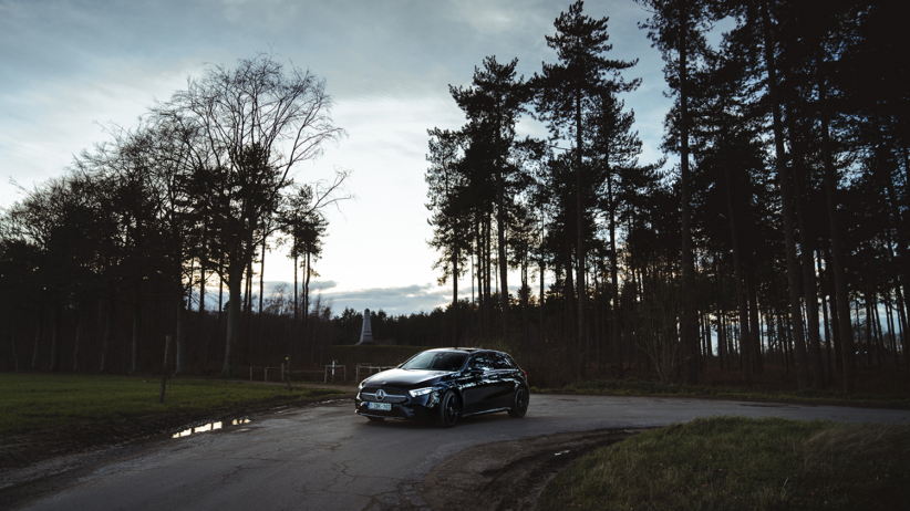 Mercedes A250 in bos